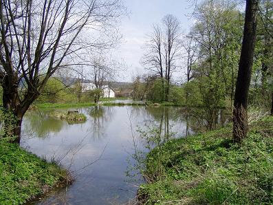 park stawy wiosna 2008